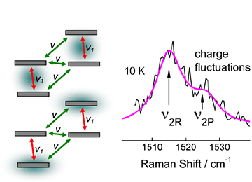 Charge Fluctuations in the Dimer-Mott Insulating State of (rac-DM-EDT-TTF)2PF6