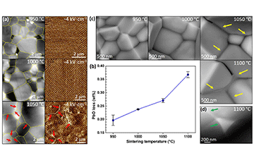 Improving the multicaloric properties of Pb(Fe0.5Nb0.5)O3 by controlling the sintering conditions and doping with manganese