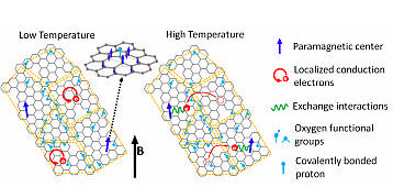 Electron Spin Echo Studies of Hydrothermally Reduced Graphene Oxide