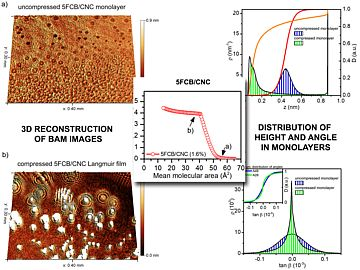 Surface characterization of nanocomposite Langmuir films based on liquid crystals and cellulose nanocrystals