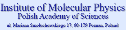 Institute of Molecular Physics, Polish Academy of Sciences, ul. Mariana Smoluchowskiego 17, 60-179 Poznań, Poland